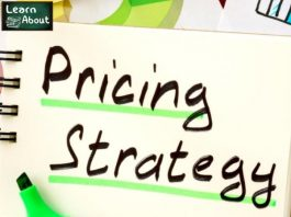 How to Price Your Services – 4 Pricing Models _ Their ProsCons