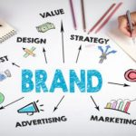 brand identity and colors